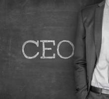 مدیرعامل حرفه ای CEO